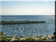 Coconut Grove Condos and Real Estate