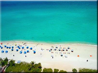 Sole On The Ocean Beach
